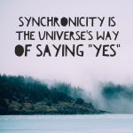 Curiosity and Synchronicity